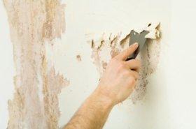 Підготовка стін до поклейки